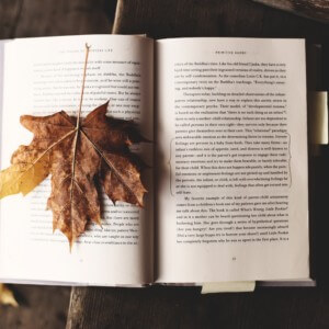 本と落ち葉